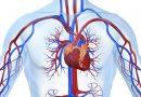 Damar Sağlığını Korumak İçin 7 Önlem