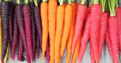 Sarı ve turuncu renkli yiyecekler spermleri daha güçlü hale getiriyor