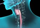 Endoskopi nedir? Ne zaman yapılmalıdır? Nelere dikkat edilmelidir?